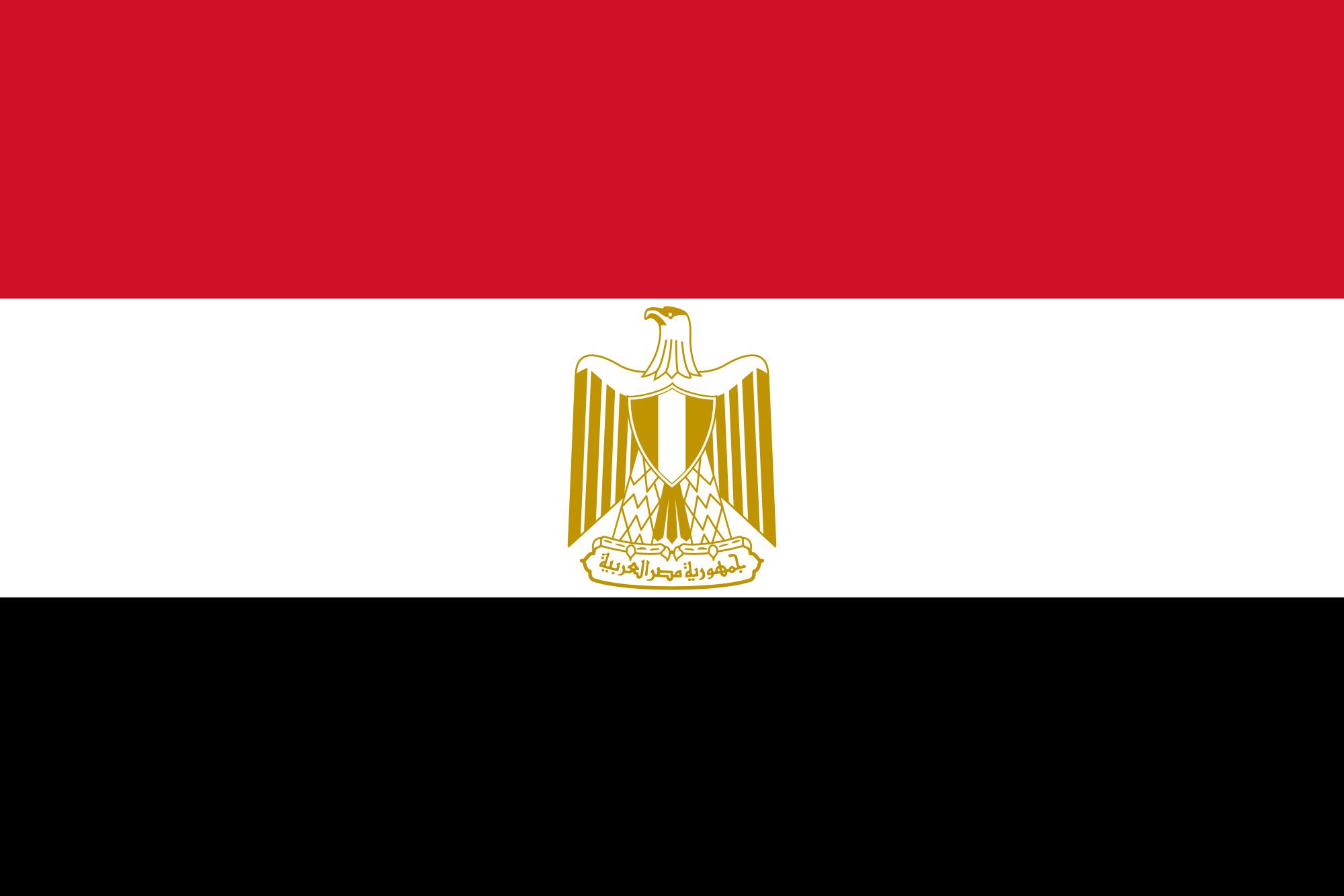 تصدي الخارجية المصرية للخلية التركية الإلكترونية بمصر