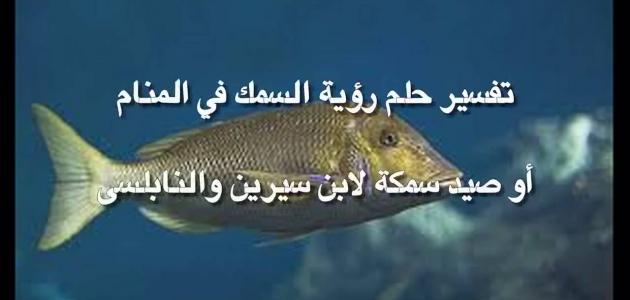 أقوال مختلفة حول تفسير رؤية السمك في المنام
