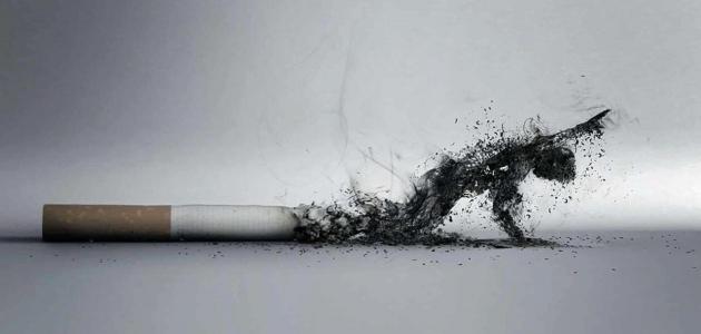 تفسير حلم رؤية السجائر أو الدخان في المنام