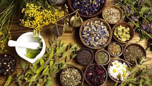 الأعشاب الطبية وتفسيرها من وجهة نظر بعض المفسرين في المنام