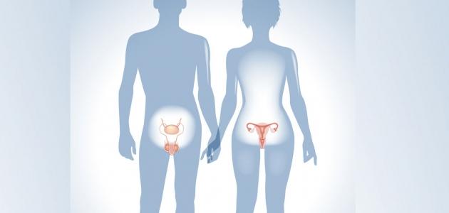 الهرمونات الأنثوية وعلاقتها بالحالة النفسية