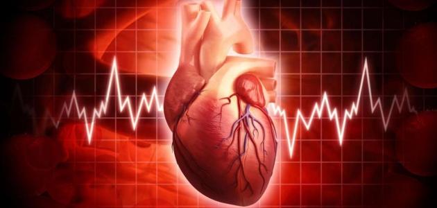 حِميات غذائية قاسية تجنبها كي تحافظ على صحة قلبك