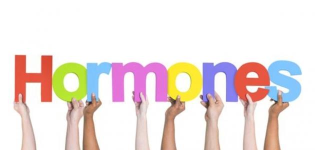 هرمونات تتحكم في معظم وظائف الجسم الرئيسة