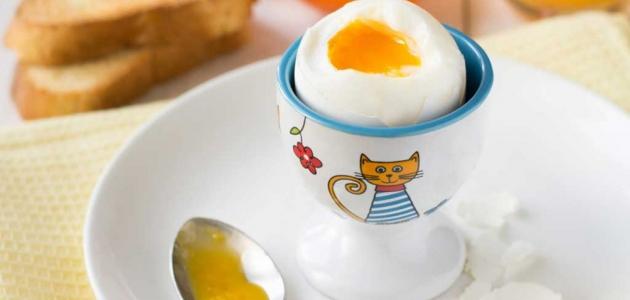 هل هناك عدد معين من البيض تتناوله يوميا لصحتك