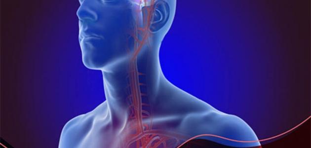 تعرف على أسباب تشوه الشريان الوريدي وطرق علاجه