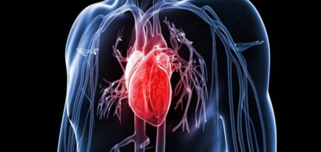 تمدد الأوعية الدموية حالات خطيرة تصيب القلب والدماغ