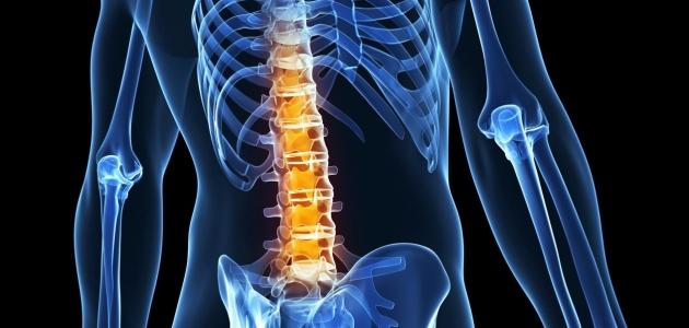 أبرز المعلومات الخاصة بالانزلاق الغضروفي التي تتمثل في ألم الذراعين والساقين