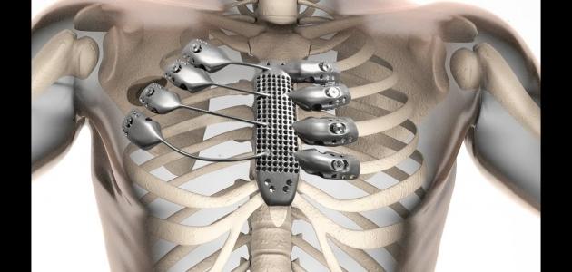 أهم المعلومات عن القفص الصدري ومما يتكون وأهم وظائفه
