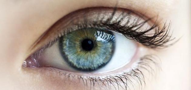 احترس مرض الجلوكوما مرض اللص الصامت (لص العيون )