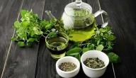 ما هي فوائد الشاي الأخضر